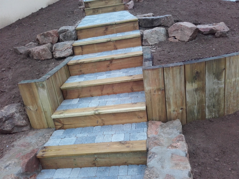 escalier en pierre d 39 egypte thollet g rard. Black Bedroom Furniture Sets. Home Design Ideas